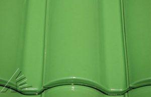 Слайд #1 | Selectum TSEV Light Green
